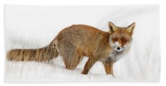 Red Fox In A Snow Covered Scene Beach Towel by Roeselien Raimond