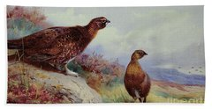 Red Grouse On The Moor, 1917 Beach Sheet by Archibald Thorburn