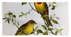 Red Headed Bunting Beach Sheet by John Gould