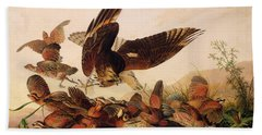 Red Shouldered Hawk Attacking Bobwhite Partridge Beach Towel by John James Audubon