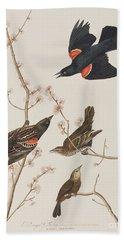 Red Winged Starling Or Marsh Blackbird Beach Sheet by John James Audubon