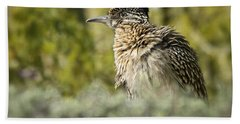 Roadrunner On Guard  Beach Towel by Saija  Lehtonen