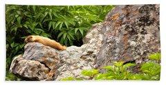Rock Chuck Beach Sheet by Lana Trussell