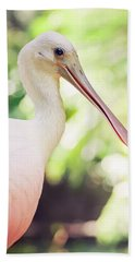 Roseate Spoonbill Beach Towel by Heather Applegate