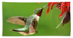 Ruby-throated Hummingbird With Red Flowers Beach Sheet by Christina Rollo