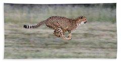 Running Cheetah In Namibia Beach Sheet by Suzi Eszterhas
