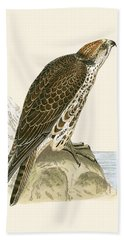 Saker Falcon Beach Towel by English School