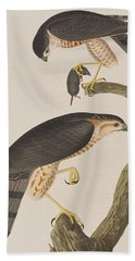 Sharp-shinned Hawk Beach Towel by John James Audubon