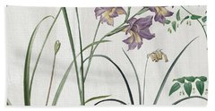 Softly Purple Crocus Beach Sheet by Mindy Sommers