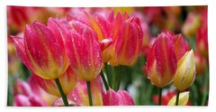 Spring Tulips In The Rain Beach Sheet by Rona Black
