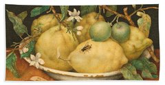 Still Life With A Bowl Of Citrons Beach Towel by Giovanna Garzoni