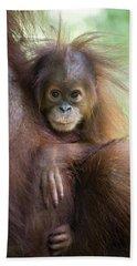 Sumatran Orangutan 9 Month Old Baby Beach Towel by Suzi Eszterhas