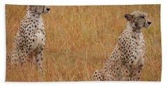 The Cheetahs Beach Towel by Nichola Denny