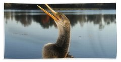 The Great Golden Crested Anhinga Beach Towel by David Lee Thompson