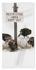 The Turkey Patrol Beach Sheet by Mike Dawson