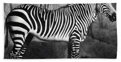 The Zebra Beach Towel by George Stubbs