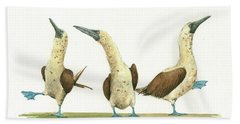 Three Blue Footed Boobies Beach Sheet by Juan Bosco