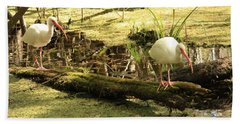 Two Ibises On A Log Beach Towel by Carol Groenen