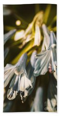Vintage Agapanthus Flower Beach Towel by Jorgo Photography - Wall Art Gallery