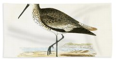 Willet Beach Towel by English School