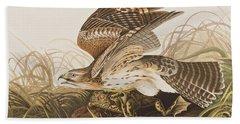 Winter Hawk Beach Sheet by John James Audubon