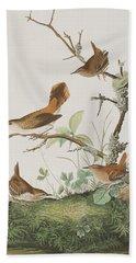 Winter Wren Or Rock Wren Beach Towel by John James Audubon