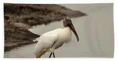 Wood Stork Walking Beach Towel by Al Powell Photography USA
