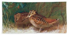Woodcock In The Undergrowth Beach Sheet by Archibald Thorburn