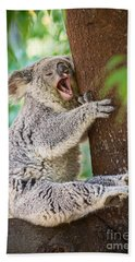 Yawn And Stretch Beach Sheet by Jamie Pham