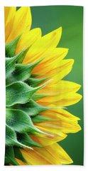 Yellow Sunflower Beach Towel by Christina Rollo