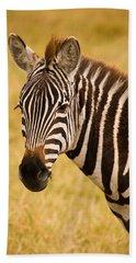Zebra Beach Sheet by Adam Romanowicz