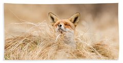 Zen Fox Series - Zen Fox 2.7 Beach Towel by Roeselien Raimond