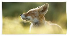 Zen Fox Series - Zen Fox Up Close Beach Towel by Roeselien Raimond