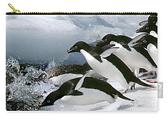 Adelie Penguins Carry-all Pouch by Art Wolfe