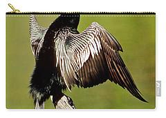 Anhinga Anhinga Anhinga Drying Plumage Carry-all Pouch by Millard H. Sharp