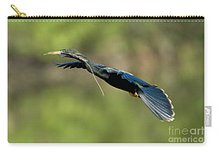 Anhinga Carry-all Pouch by Anthony Mercieca