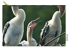 Anhinga Chicks Carry-all Pouch by Mark Newman