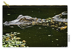 Baby Gator Carry-all Pouch by Phill Doherty