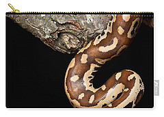 Blood Python Python Brongersmai Carry-all Pouch by David Kenny