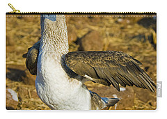 Blue-footed Booby Courtship Behavior Carry-all Pouch by William H. Mullins