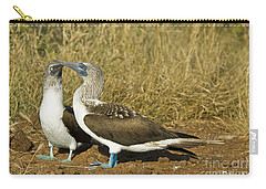 Blue-footed Booby Pair Carry-all Pouch by William H. Mullins