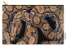 Brazilian Rainbow Boa Carry-all Pouch by Art Wolfe