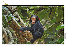 Chimpanzee Baby On Liana Gombe Stream Carry-all Pouch by Thomas Marent