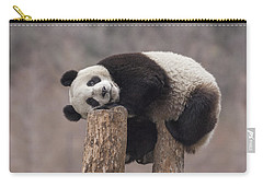 Giant Panda Cub Wolong National Nature Carry-all Pouch by Katherine Feng