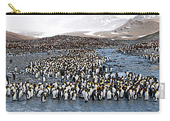 King Penguins Aptenodytes Patagonicus Carry-all Pouch by Panoramic Images