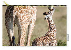 Masai Giraffe Giraffa Camelopardalis Carry-all Pouch by Panoramic Images