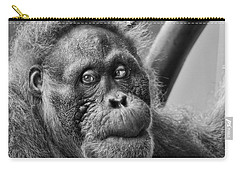 Orangutan Mama Carry-all Pouch by Phill Doherty