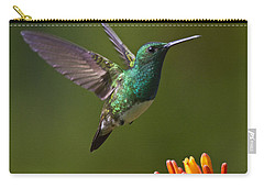 Snowy-bellied Hummingbird Carry-all Pouch by Heiko Koehrer-Wagner