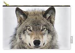 Timber Wolf Portrait Carry-all Pouch by Tony Beck