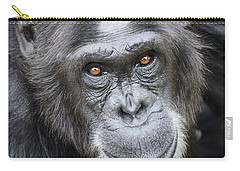 Chimpanzee Portrait Ol Pejeta Carry-all Pouch by Hiroya Minakuchi